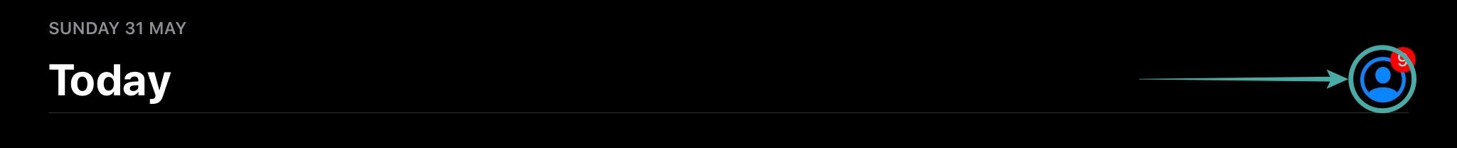 Cara Update Zoom Di IPhone Atau Ios