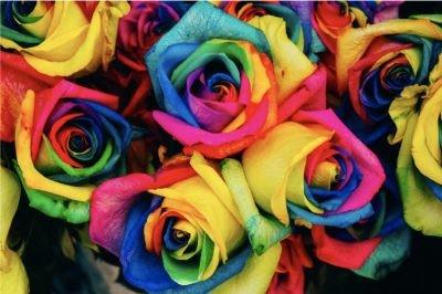 Photoshop Blending Modes Explained - Dyed Roses