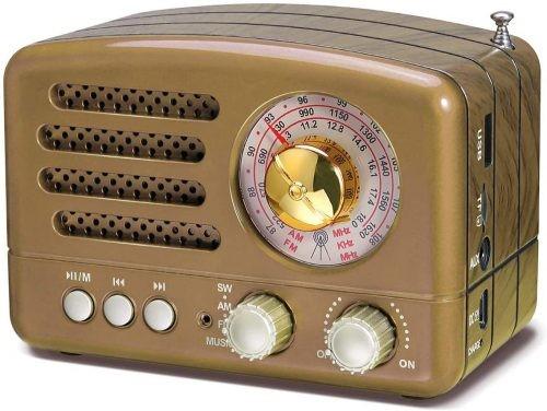 Best Bluetooth Speaker with Radio Prunus J 160